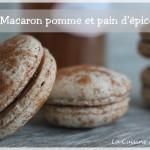 Macarons de noël : épices de pain d'épice et confiture pomme cannelle