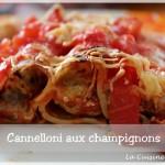 Cannelloni aux champignons et à la ricotta