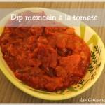 Sauce épicée à la tomate pour chips tortillas (dip)