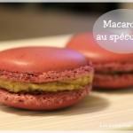 Macarons au spéculoos // Pâte à spéculos